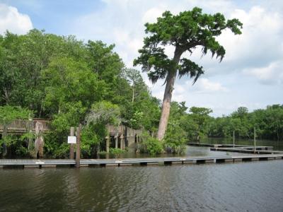 River Delta Park Gallery Image 2