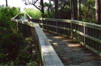 Bayfront Park Gallery Image 8