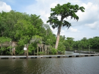 River Delta Park Gallery Image 73